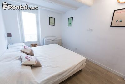 Image 5 furnished 1 bedroom Apartment for rent in Other Rhone, Rhone