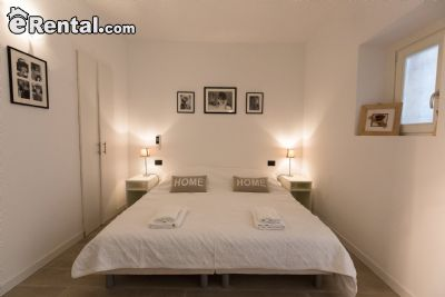 Image 9 furnished 1 bedroom Apartment for rent in Other Rhone, Rhone