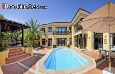 Image 9 furnished 2 bedroom Apartment for rent in Ras al Khaymah, Ras al Khaymah