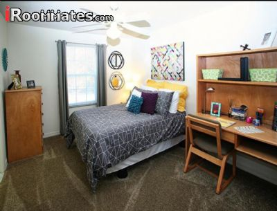 Roommate wanted for room for rent in apartment in chapel - One bedroom apartment in orange county ...