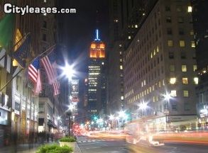 Image 8 furnished 1 bedroom Apartment for rent in Gramercy-Union Sq, Manhattan