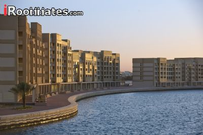 Image 10 Room to rent in Ras al Khaymah, Ras al Khaymah 2 bedroom Apartment
