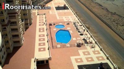Image 9 Room to rent in Ras al Khaymah, Ras al Khaymah 2 bedroom Apartment