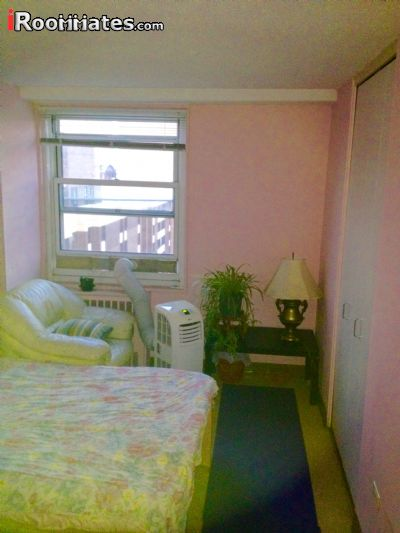 Image 2 Furnished room to rent in Gramercy-Union Sq, Manhattan 2 bedroom Apartment