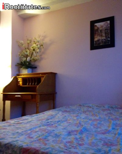 Image 4 Furnished room to rent in Gramercy-Union Sq, Manhattan 2 bedroom Apartment