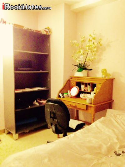 Image 6 Furnished room to rent in Gramercy-Union Sq, Manhattan 2 bedroom Apartment