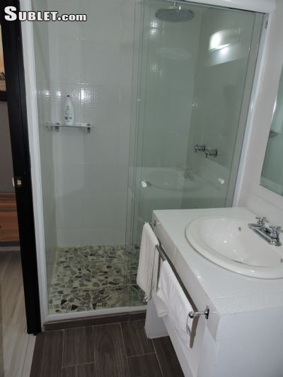 Image 5 furnished 1 bedroom Hotel or B&B for rent in Coyoacan, Mexico City