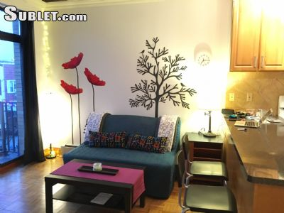 Image 3 furnished 1 bedroom Apartment for rent in Williamsburg, Brooklyn