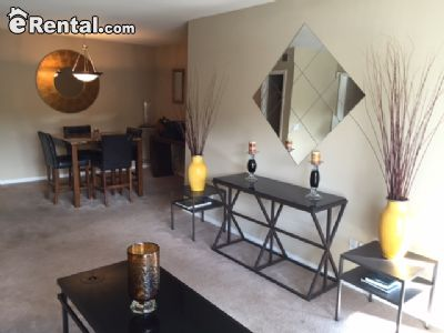 Image 4 unfurnished 2 bedroom Apartment for rent in North Atlanta, DeKalb County