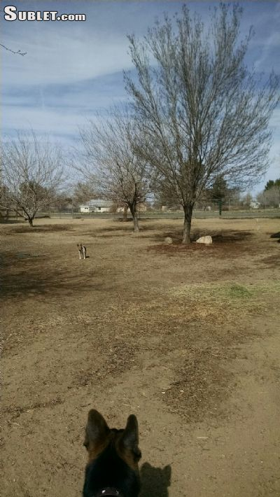 Image of $600 3 single-family home in Antelope Valley in Lancaster, CA