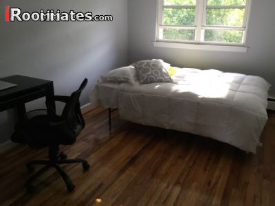 Image 1 Furnished room to rent in Soundview, Bronx 5 bedroom House