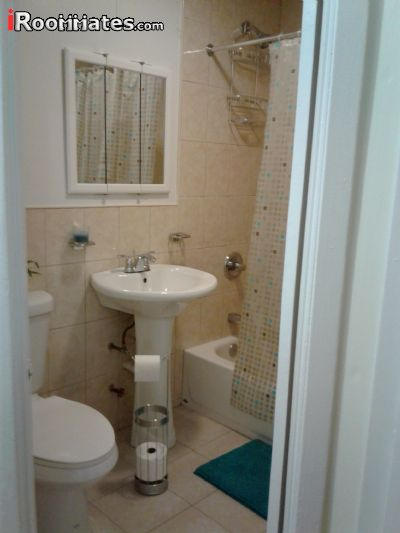 Image 5 Furnished room to rent in Soundview, Bronx 5 bedroom House