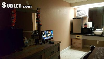 Image 3 furnished 1 bedroom Apartment for rent in Lutz, Hillsborough (Tampa)