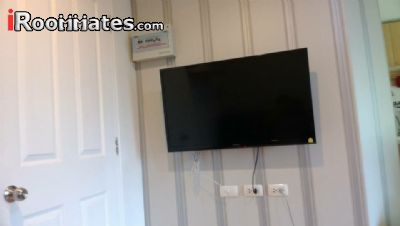 Image 7 Furnished room to rent in Phuket, South Thailand 1 bedroom Apartment