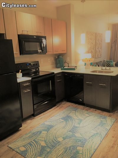 Image 2 either furnished or unfurnished 1 bedroom Apartment for rent in Deep Deuce, Oklahoma City