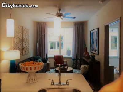 Image 3 either furnished or unfurnished 1 bedroom Apartment for rent in Deep Deuce, Oklahoma City