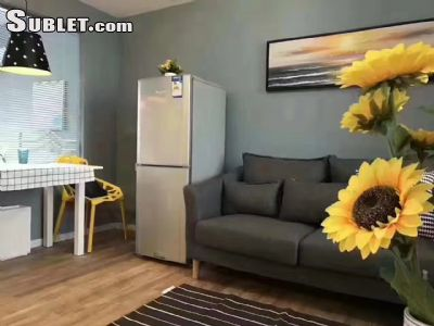 Image 3 furnished 2 bedroom Apartment for rent in Pudong, Inner Suburbs