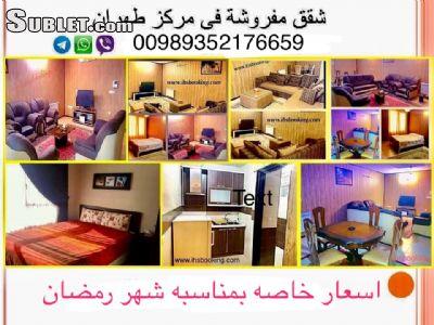 3197837 info