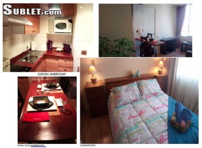Image 4 furnished 1 bedroom Apartment for rent in Santiago, Santiago Province