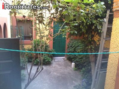 Image 5 Furnished room to rent in Gustavo A Madero, Mexico City 5 bedroom Dorm Style