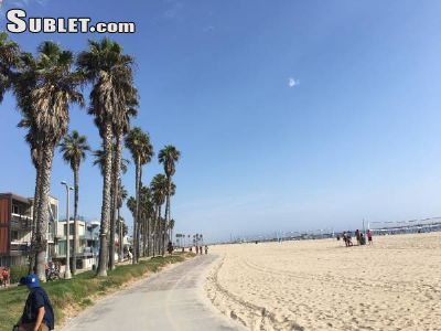 Image 2 Furnished room to rent in Venice, West Los Angeles 3 bedroom Apartment