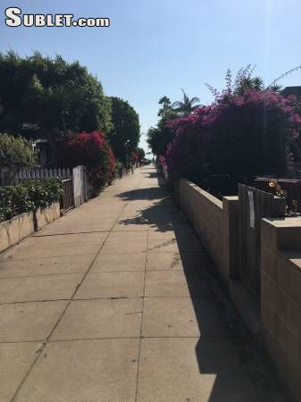 Image 5 Furnished room to rent in Venice, West Los Angeles 3 bedroom Apartment