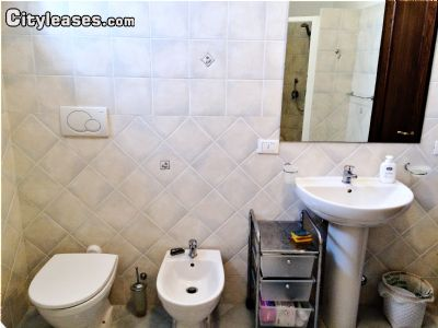 Image 8 furnished 2 bedroom Apartment for rent in Other Grosseto, Grosseto