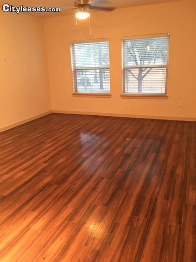 Image 2 either furnished or unfurnished 2 bedroom Apartment for rent in Deep Deuce, Oklahoma City