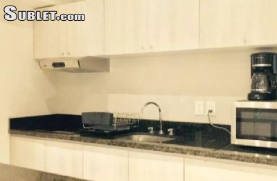 Image 8 either furnished or unfurnished 1 bedroom Apartment for rent in Miguel Hidalgo, Mexico City