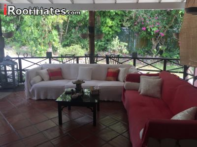 Image 4 Furnished room to rent in Saint Michael, Barbados Studio bedroom Apartment