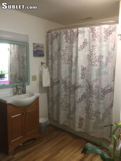 Image 7 furnished 1 bedroom Apartment for rent in Townsend, Blount (Maryville)