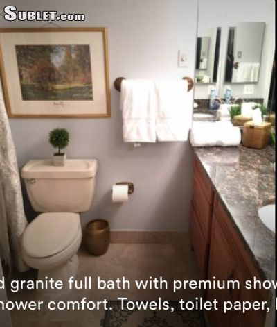 Image 6 furnished 1 bedroom Apartment for rent in Tysons Corner, DC Metro
