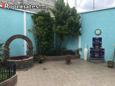 Image 5 Room to rent in Cholula, Puebla 4 bedroom Dorm Style
