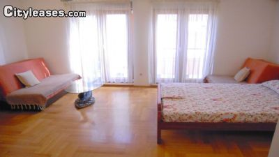 Image 3 furnished Studio bedroom Apartment for rent in Podgorica, South Montenegro