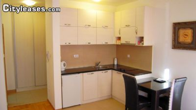 Image 5 furnished Studio bedroom Apartment for rent in Podgorica, South Montenegro
