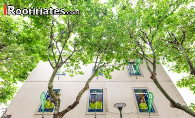 Image 10 Furnished room to rent in Cascais, Lisbon District 5 bedroom Hotel or B&B