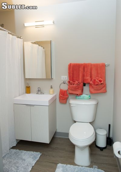Image 7 furnished 2 bedroom Apartment for rent in Chicago Lawn, South Side