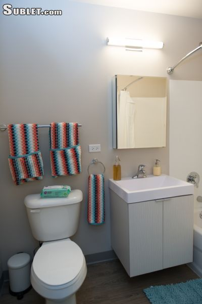 Image 8 furnished 2 bedroom Apartment for rent in Chicago Lawn, South Side