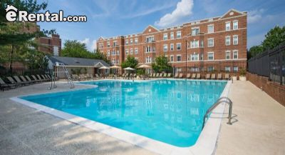 Image 4 unfurnished 1 bedroom Apartment for rent in Cathedral Area, DC Metro