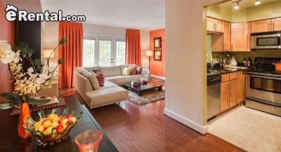 Image 1 unfurnished 1 bedroom Apartment for rent in Cathedral Area, DC Metro