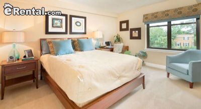 Image 2 unfurnished 1 bedroom Apartment for rent in Cathedral Area, DC Metro