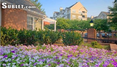 Image 2 either furnished or unfurnished 1 bedroom Apartment for rent in Alexandria, DC Metro