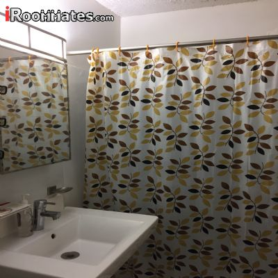 Image 3 Furnished room to rent in Gramercy-Union Sq, Manhattan 1 bedroom Apartment