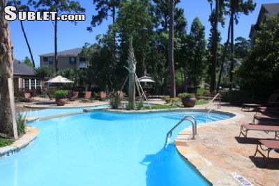 Image 10 either furnished or unfurnished 1 bedroom Apartment for rent in Kingwood, NE Houston