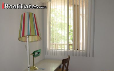 Image 1 Room to rent in San Pedro, South Bay 3 bedroom Townhouse