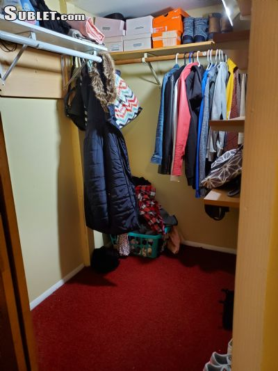 Image 4 furnished 1 bedroom Apartment for rent in Flatbush, Brooklyn