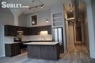 Image 1 furnished 1 bedroom Apartment for rent in St Paul Downtown, Twin Cities Area