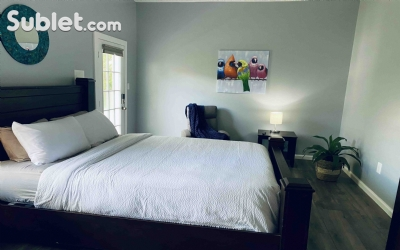 rooms for rent in Winchester