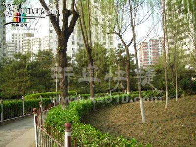 Image 2 Room to rent in Chaoyang, Beijing Inner Suburbs 3 bedroom Apartment