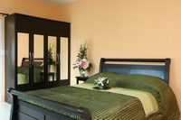 Image 2 either furnished or unfurnished 1 bedroom Apartment for rent in Chiang Mai, North Thailand